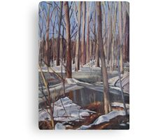 Winter Scene in Rock Creek Park Canvas Print