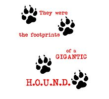 The Footprints of a Gigantic H.O.U.N.D. Photographic Print