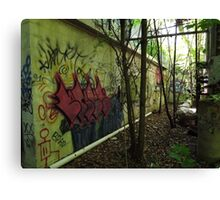 Graffiti from an old allyway - Canvas Print