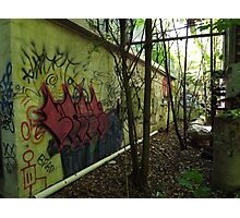 Graffiti from an old allyway - Photographic Print