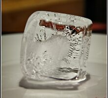 Ice Cube - 4 by Wolf Sverak