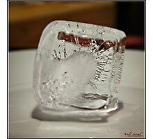Ice Cube - 4 Photographic Print