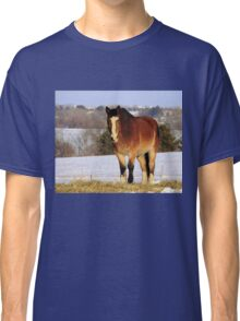 On top of the hill Classic T-Shirt