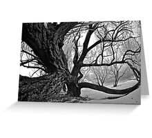 Sleepy Hollow Greeting Card