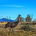 Emu by Jessy Willemse