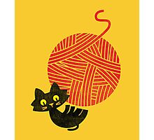 Happiness - cat and yarn Photographic Print