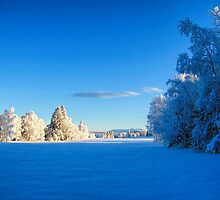 Beautiful winter landscape in Sweden by Ingvar Bjork Photography