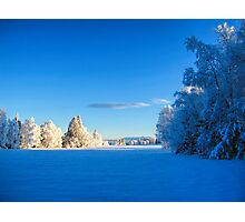 Beautiful winter landscape in Sweden Photographic Print