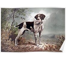 German Pointer painting Poster