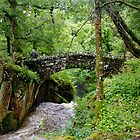 Aira Force Bridge by Dennis Wetherley