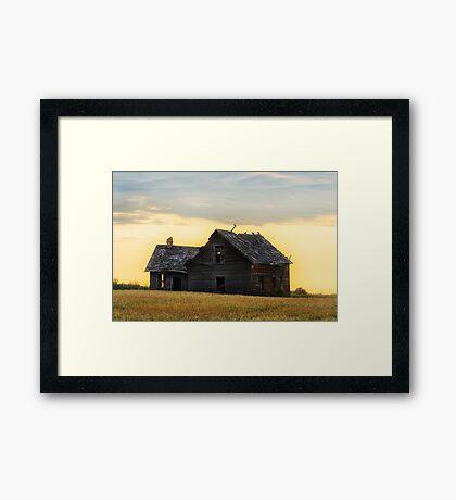 On Golden Field Framed Print
