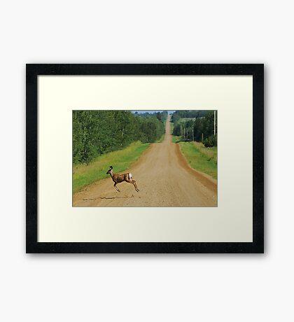 Shortcut Framed Print