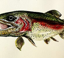 ALASKAN RAINBOW TROUT ART, from J. Vincent Scarpace. AWESOME, MUST SEE by 17easels