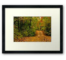 Opossum Creek Road Framed Print