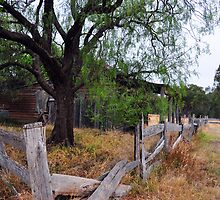 old house at Costerfield by Leone