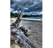 Driftwood HDR - Rheban Beach, Orford, Tasmania, Australia Photographic Print