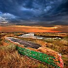 Retired Plava at the Delta of Evros  by Hercules Milas
