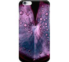 lily pad XI iPhone Case/Skin