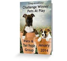 Banner Design for Challenge Winner.  Pets at Play. Greeting Card