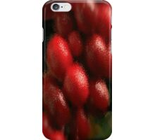Holly Berries on Branch iPhone Case/Skin