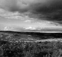 Ilkley Moors by paulasphotos101