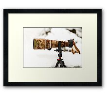 Squirrel Photographer Framed Print
