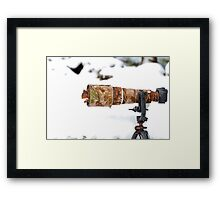 Red Squirrel Hiding Framed Print