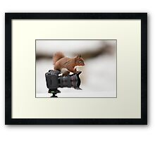 Little Photographer  Framed Print