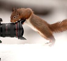 How Wide Is This Lens? by dgwildlife
