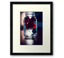 Bottled Dream Framed Print