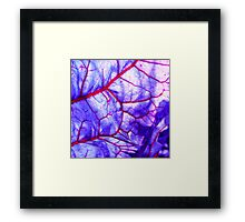 bloodstream abstract III Framed Print