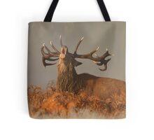 Red Deer in the Mist Tote Bag