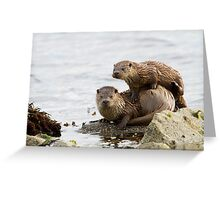 Otter Mum With a Playful Cub Greeting Card