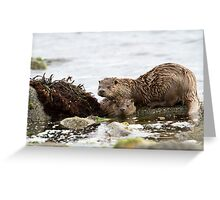 Otter Mum with a Cub  Greeting Card