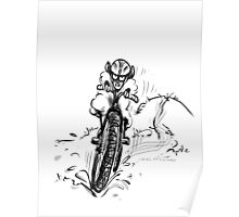 Mountain bike sheep Poster