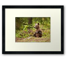Lonely Cub Framed Print