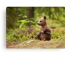 Lonely Cub Canvas Print