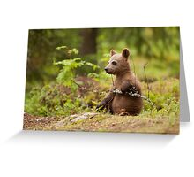 Lonely Cub Greeting Card