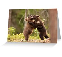 Brown Bear Cubs Play Fighting Greeting Card