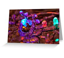 Coloured Ice! Greeting Card
