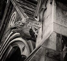 Gargoyle by PhotosByHealy