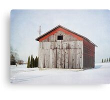 Will I make it through another winter? Metal Print