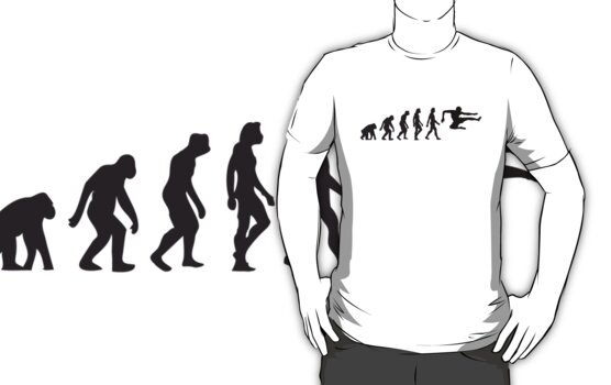 Evolution of Karate by artpolitic