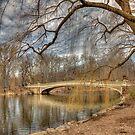 Bow Bridge  by FLYINGSCOTSMAN