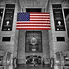 Grand Central Station by FLYINGSCOTSMAN