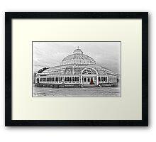 The Palm House Sefton Park Framed Print