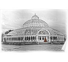 The Palm House Sefton Park Poster
