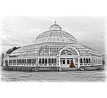 The Palm House Sefton Park Photographic Print