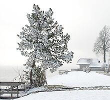 Attersee - Austria by Arie Koene
