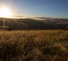 Chasing the Sun by WendyJC